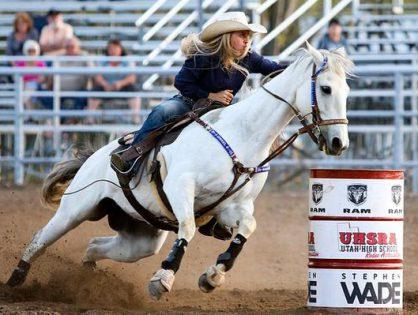 Ochraniacze - ważne zabezpieczenie dla konia