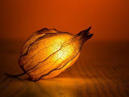 Kilka słów o produkcji lamp kryształowych