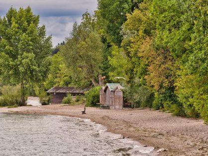 Domki nad jeziorem w Lubuskim